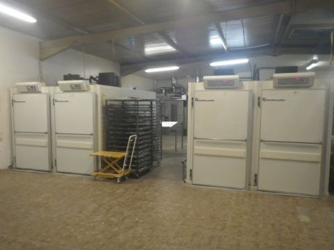 Tunnel de fermentation double 800x800mm occasion
